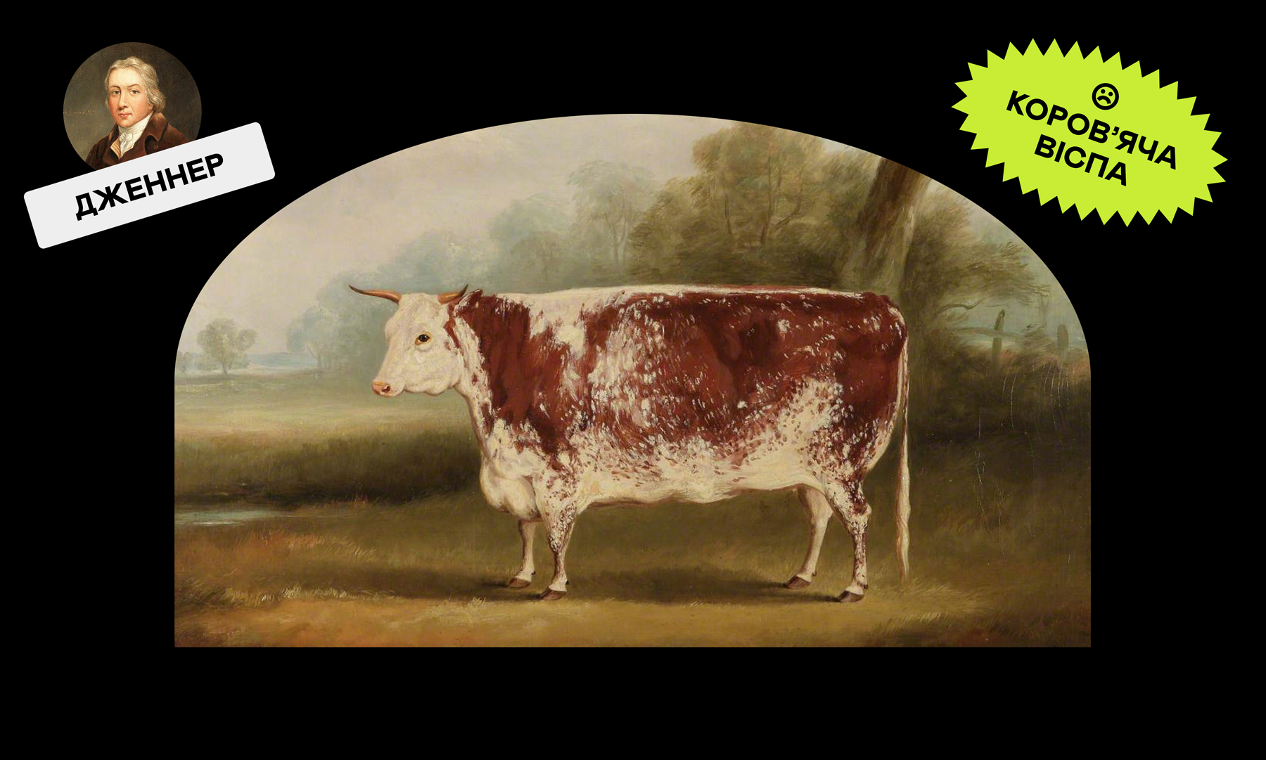 ↑ Вільям Генрі Дейвіс / Херефордська корова / 1852 р.